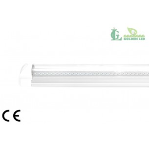 TUB LED T8 8W 5500K-6000K LUMINA RECE INTEGRAT-TRANSPARENT