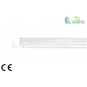 Tub LED T8   8W 6000K Lumina Rece - Transparent