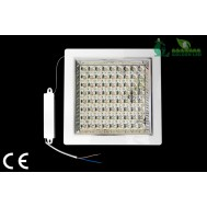 Aplica LED 6W 2700K lumina calda